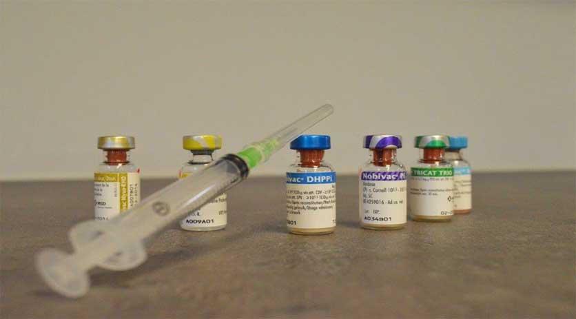 Inentingen Suriname