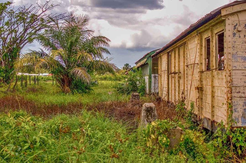 Suriname Onverwacht
